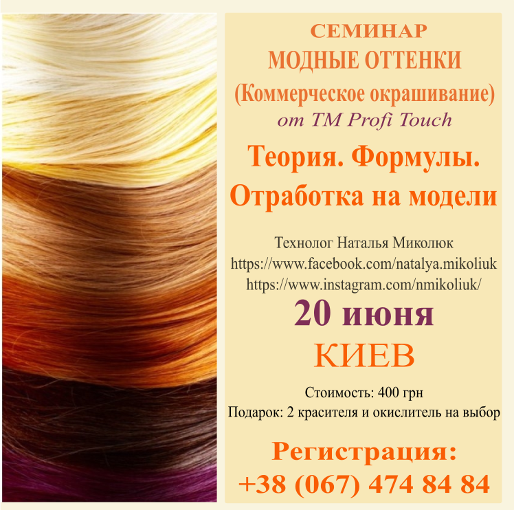 profi touch, nmikoliuk, колористика, семинар для парикмахеров